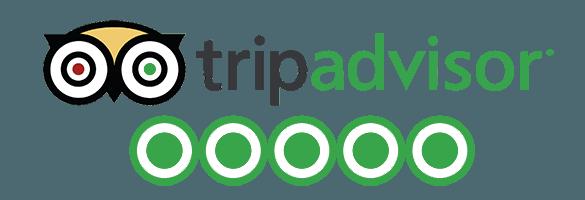 Tripadvisor fjord cruise